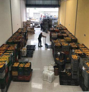 Balcão Planeta Alimentos